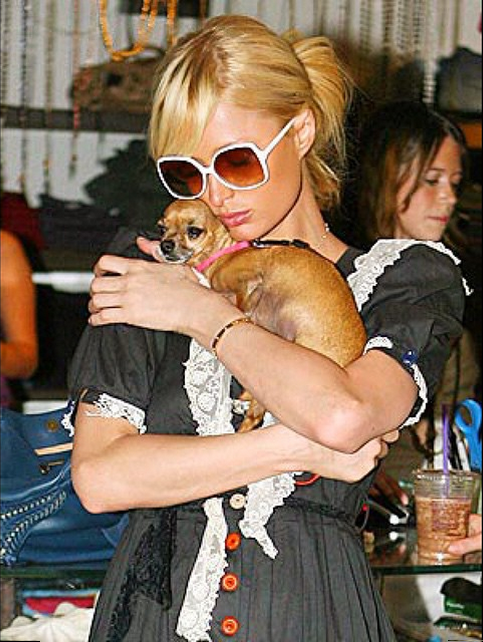 Paris Hilton's Dog Tinkerbell Dies